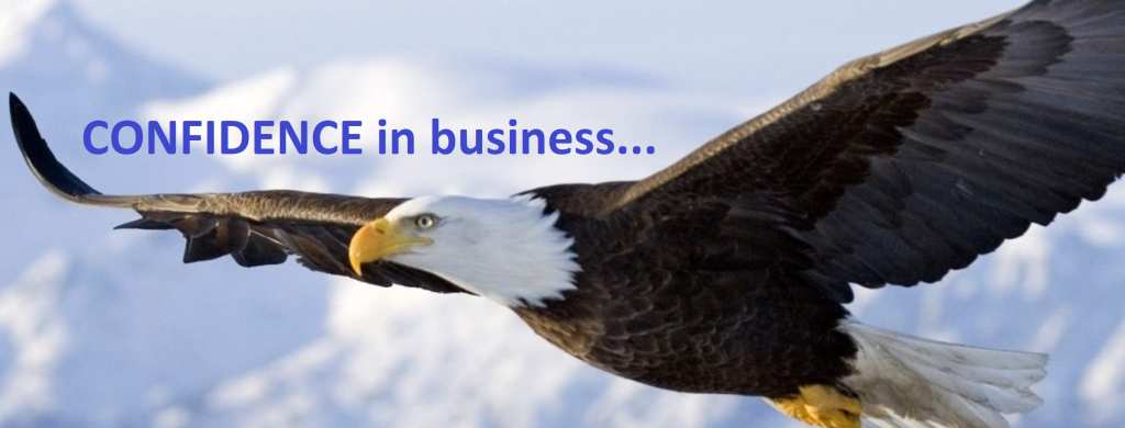 confidence gives you wings in business brey owen